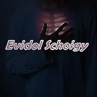 Evidol_Schoigy